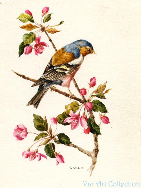 Рисованные открытки с птицами